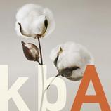Baumwolle aus kontrolliert biologischem Anbau (kbA)